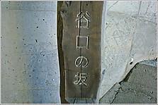 A3_p1020637c